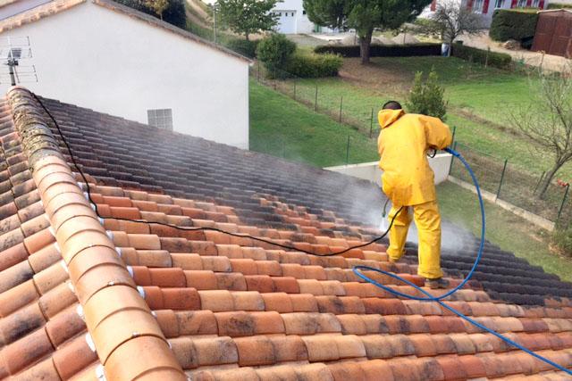 Nettoyage de toiture Chauché